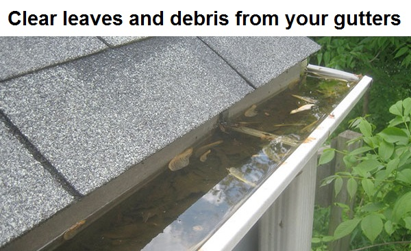 Proper gutter maintenance is your first line of defense against leaks inside your home.